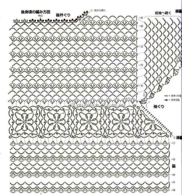 Цветы эустома или лизиантус их выращивание и посев 92
